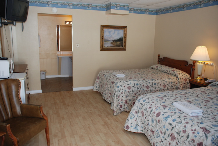 Pet Friendly Room with 2 beds and desk area